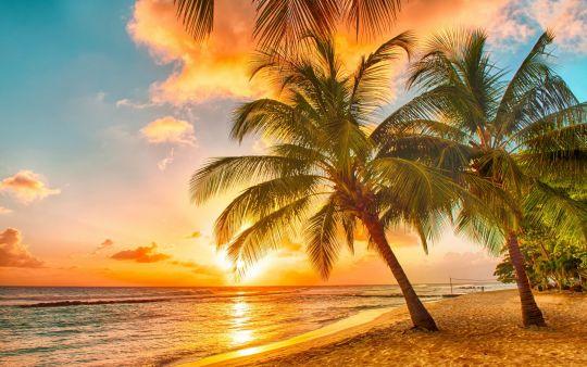 Diamond Painting Artibalta - Tropical Sunset