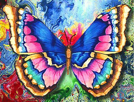 Diamond Painting Artibalta - Butterfly 2