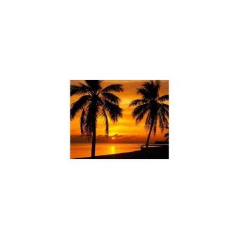 Diamond Painting Artibalta - PALMS AT SUNSET