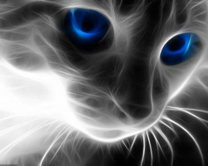 Diamond Painting Artibalta - Cat's Eye