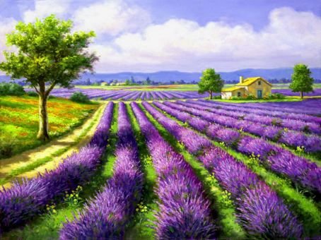 Diamond Painting Artibalta - Lavendel Field