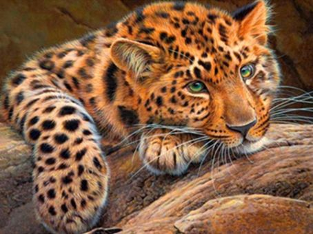 Diamond Painting Artibalta - Leopard