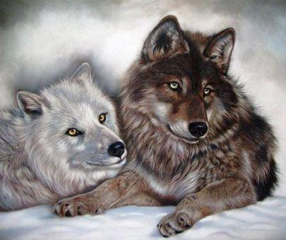Diamond Painting Artibalta - Two Wolves