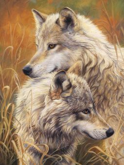 Diamond Painting Artibalta - Wolf Tendernes