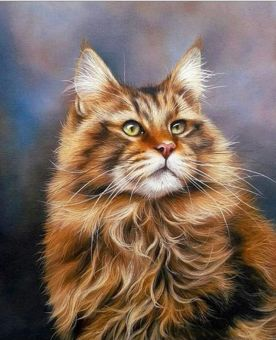 Diamond Painting Artibalta - Maine Coon