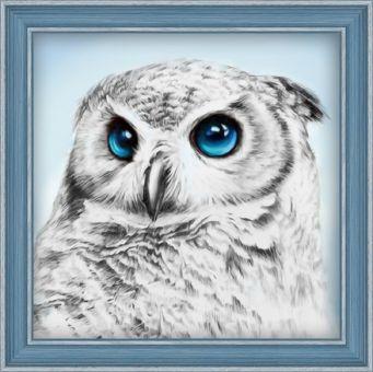 Diamond Painting Artibalta - Owl Sight
