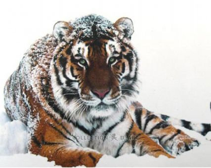 Diamond Embroidery/ Diamond Painting - Tiger on the snow