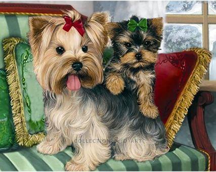 Diamond Embroidery/ Diamond Painting - Yorkshire terriers