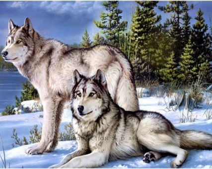 Diamond Embroidery/ Diamond Painting -  Wolves