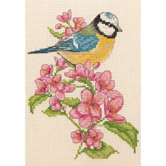 Anchor - Bluetit and Blossom