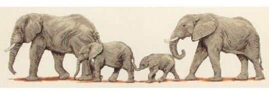 Anchor - Elephant Stroll