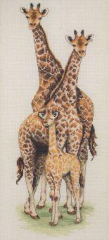 Anchor - Giraffen
