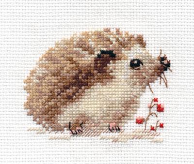 Alisa - Little Hedgehog