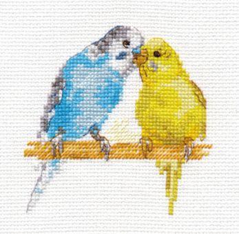 Alisa - Parrots