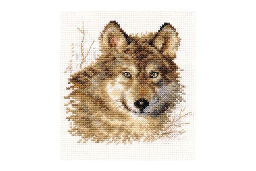 Alisa - Wolf