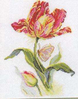 Alisa - Tulpe und Schmetterling