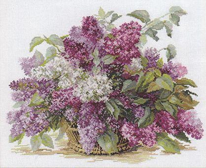 Alisa - Lilacs