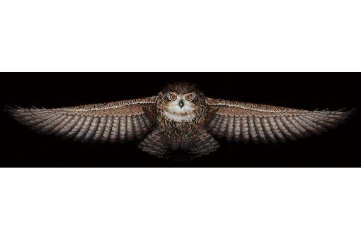 ANDRIANA - OWL