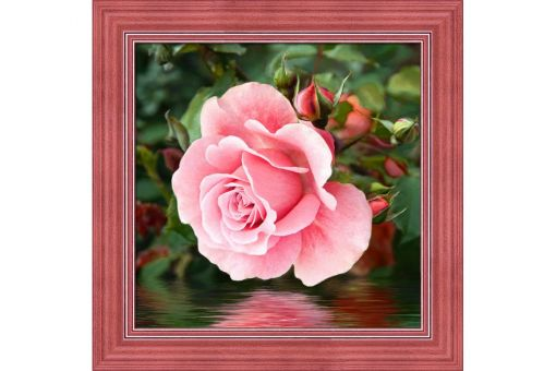 Diamond Painting Artibalta - ROSE BY THE WATER