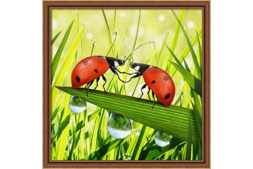 Diamond Painting Artibalta - LADYBUG COUPLE