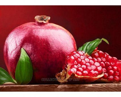 Diamond Embroidery/ Diamond Painting - Pomegranate