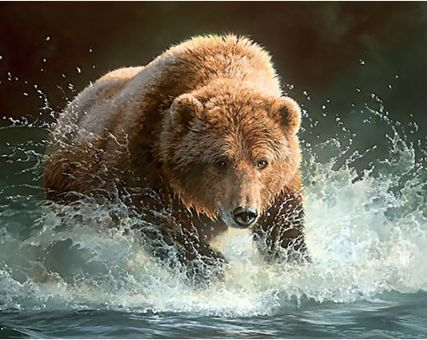 Diamond Embroidery/ Diamond Painting - Bear fishing