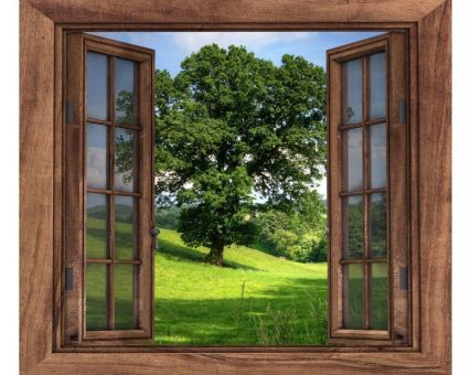 Diamond Embroidery/ Diamond Painting - Window to the forest
