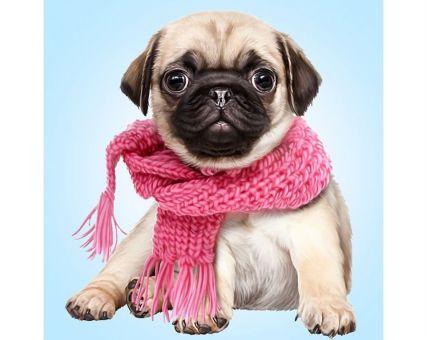 Diamond Embroidery/ Diamond Painting - Pugdog with scarve