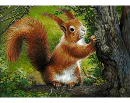 Diamond Embroidery/ Diamond Painting - Forest squirrel