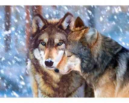 Diamond Embroidery/ Diamond Painting - Wolf couple