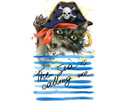 Diamond Embroidery/ Diamond Painting - Cat pirate