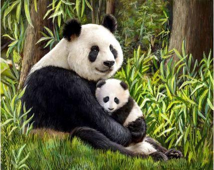 Diamond Embroidery/ Diamond Painting - Panda mother