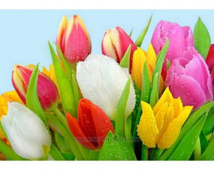 Super SALE Diamond Embroidery/ Diamond Painting - Dew on tulips