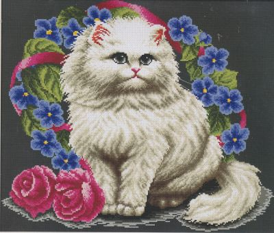 CSC Gold Edition - Persian Cat