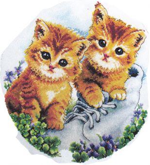 CSC Gold Edition - Süße kleine Baby-Kätzchen 2