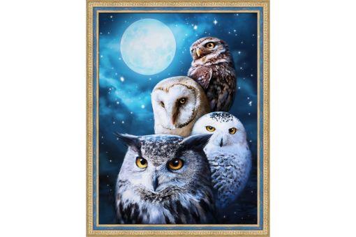 Diamond Painting Artibalta - NIGHT OWL