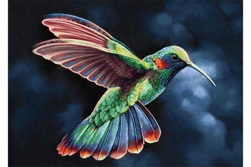 Super SALE Diamond Painting Wizardi - TROPIC BIRD