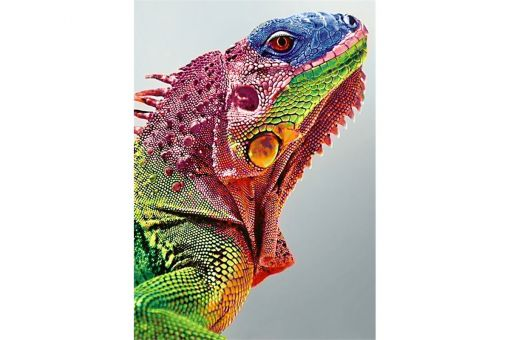Diamond Painting Wizardi - IGUANA