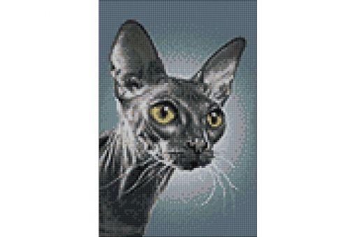 Diamond Painting Wizardi - DARK SPHYNX CAT
