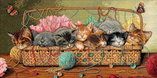 Dimensions Gold Collection - Katzenkorb - Kitty Litter