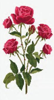 DMC - Roses