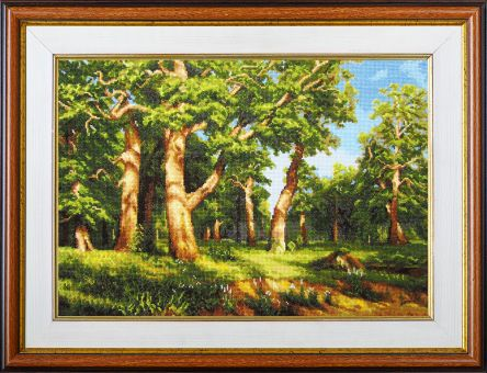 Expressions - Oak wood