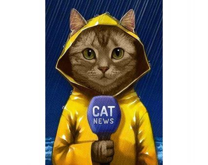 Diamond Embroidery/ Diamond Painting -  Cat-reporter