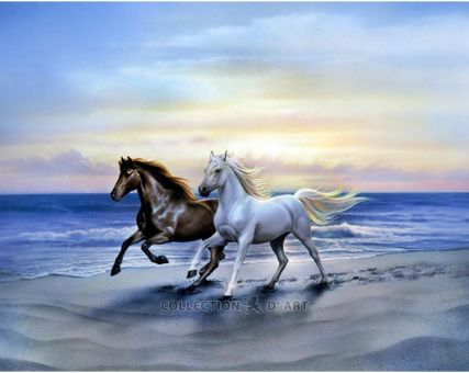 Diamond Embroidery/ Diamond Painting - Arab horses