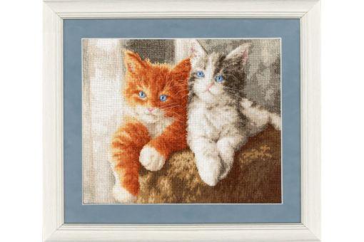 Zolotoe Runo - FLUFFY KITTENS