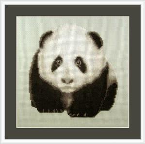 Orcraphics - Playful Panda