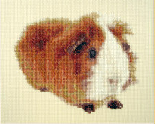 Orcraphics Cross Stitch - Reds have more fun
