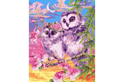 Malen nach Zahlen - TENDER OWLS
