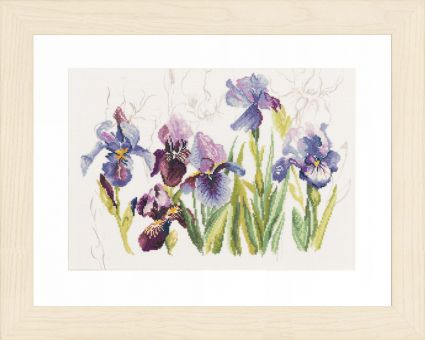 Lanarte - BLUE FLOWERS - IRISSES
