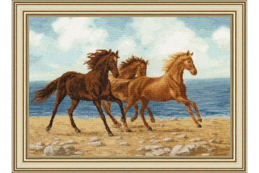 Zolotoje Runo - HORSES
